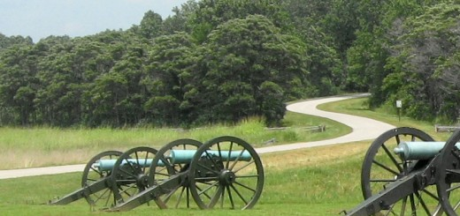 Artillery at Pea Ridge NMP