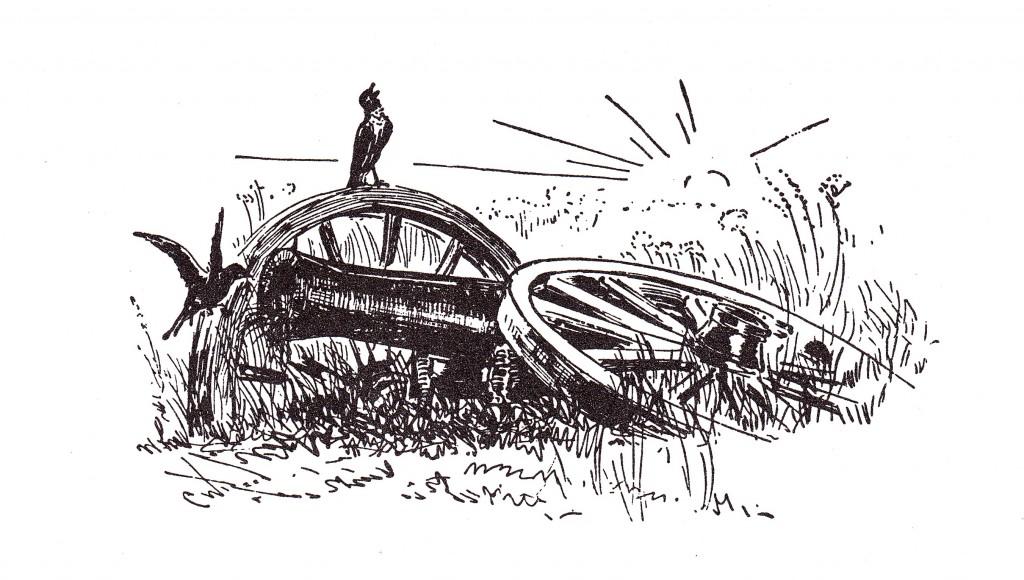 Birds on Cannon