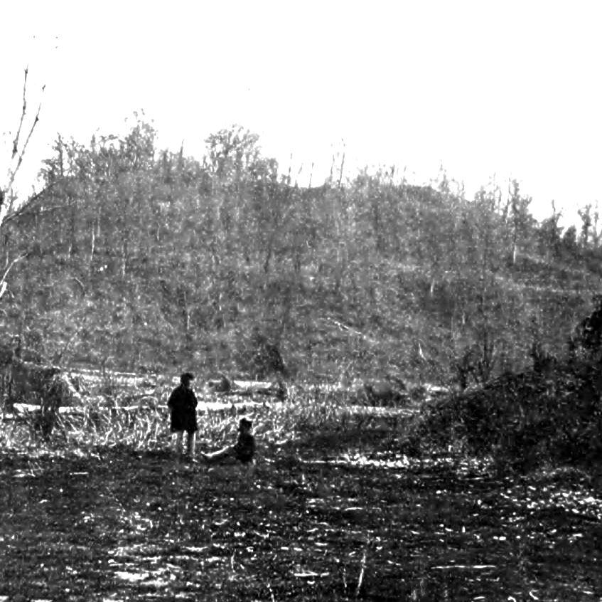 Walnut Hills or Chickasaw Bluffs, VIcksburg