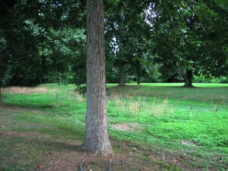 Remnant of Grant's Canal at Vicksburg National Military Park